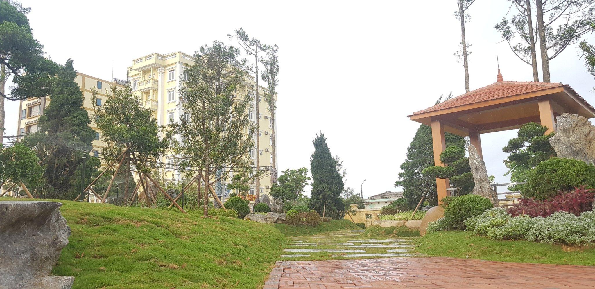 Dự án công viên Tùng Cô Tô